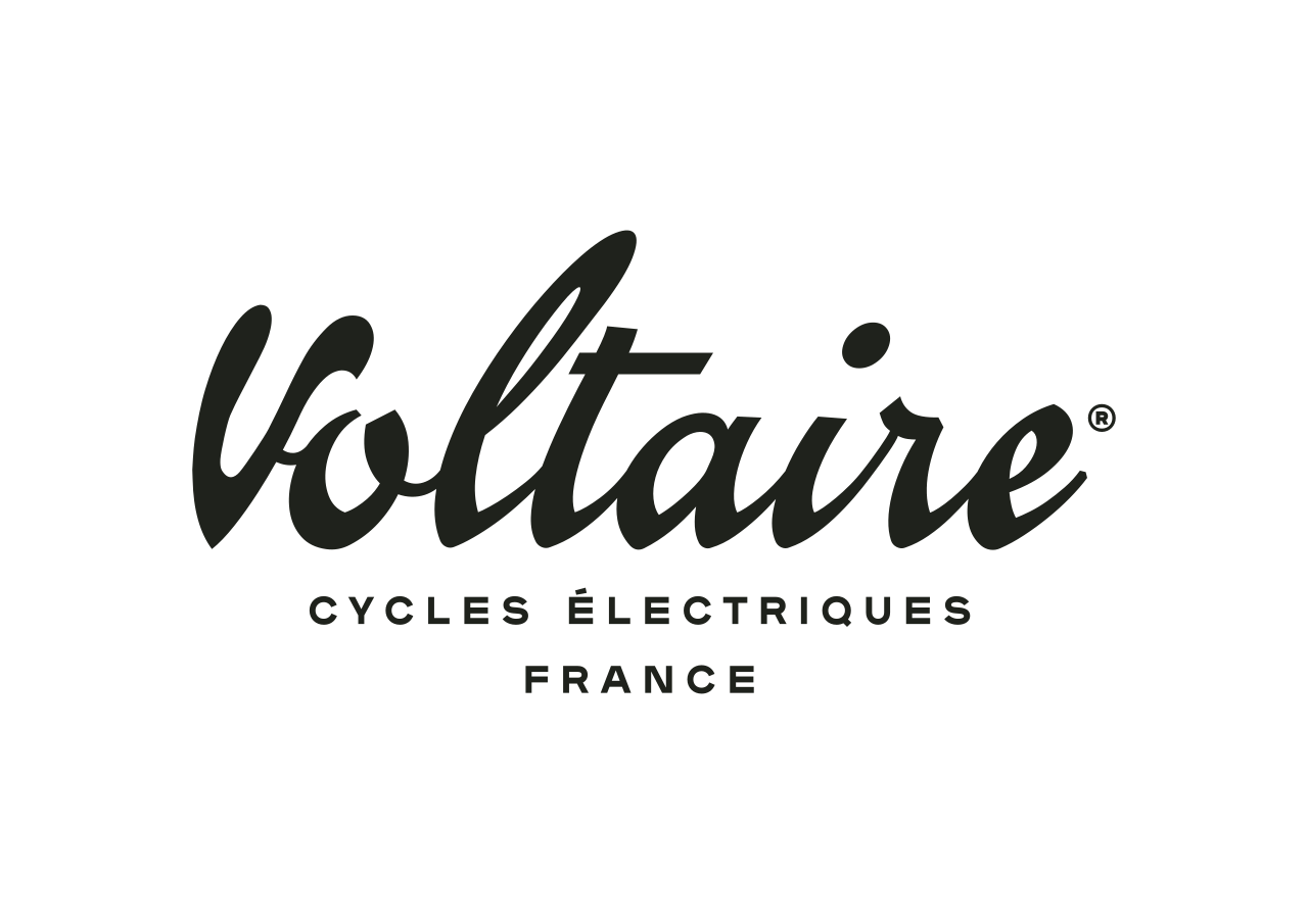 Voltaire logo png